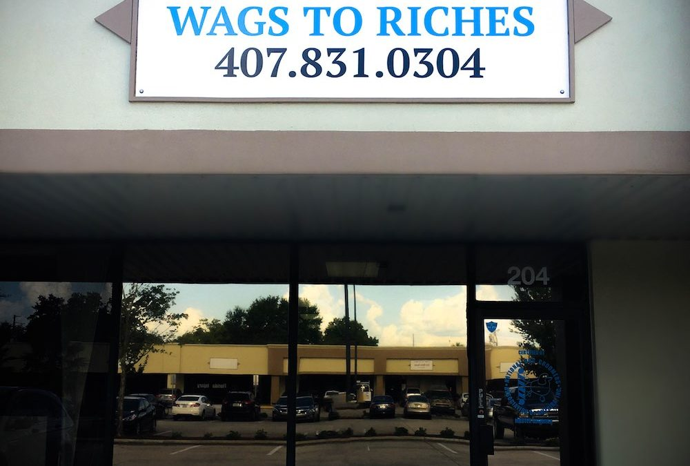 New Wags To Riches Location
