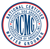 Wags To Riches Master Certified Florida Dog Grooming